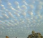 高積雲(ひつじぐも)